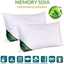 Evergreenweb 2 Cuscini Memory Foam e Oli Essenziali