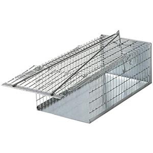 Chance SAS trappola a Galleria